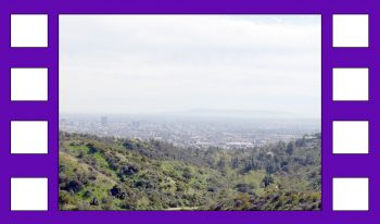 L.A. - things have changed a bit in recent months!